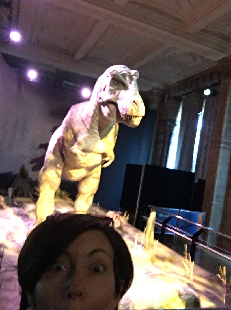 T-Rex in action at the Natural History Museum